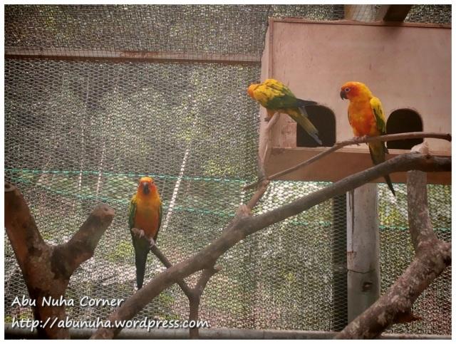 Taman Burung (5)