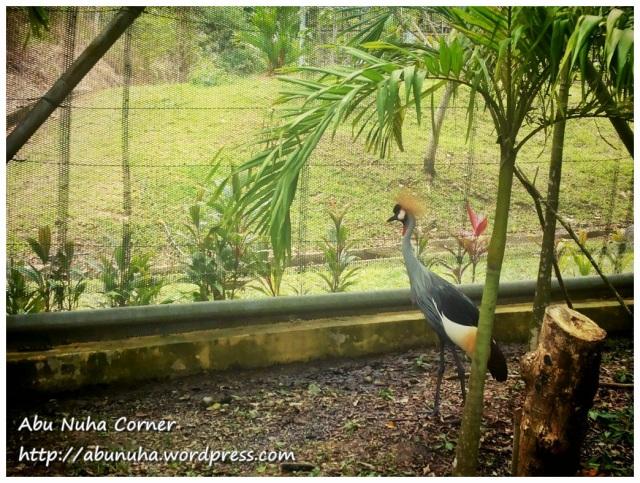 Taman Burung (6)