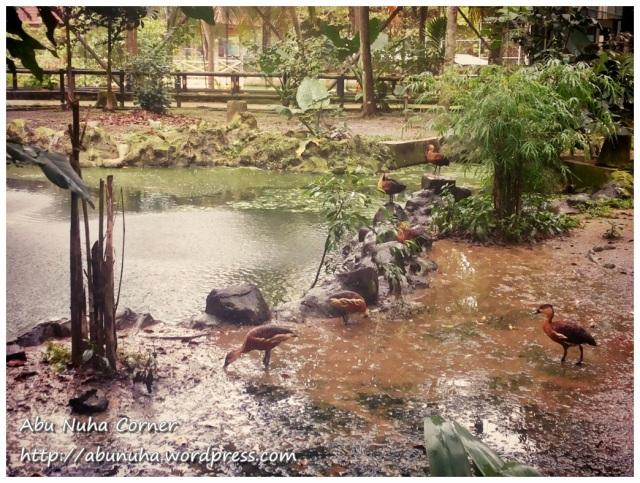 Taman Burung (7)