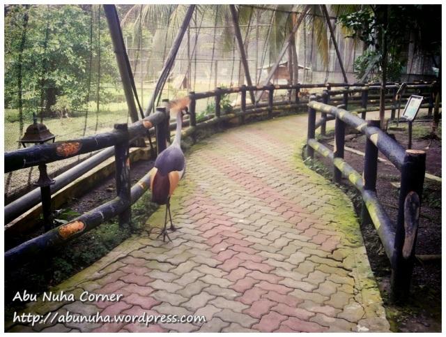 Taman Burung (8)