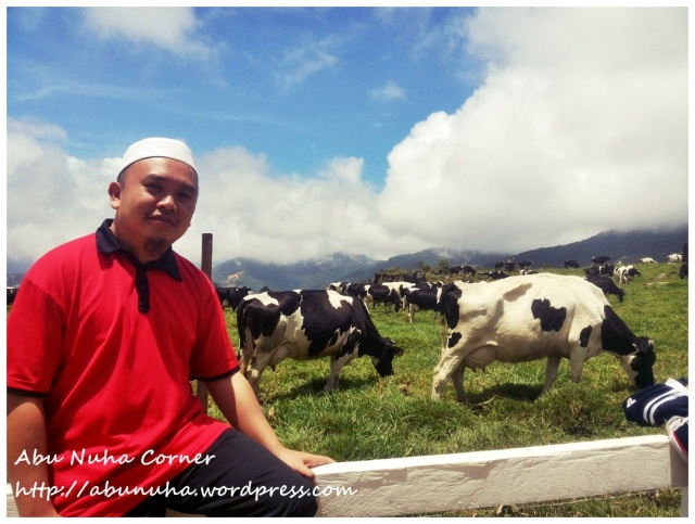 DairyFarm (5)