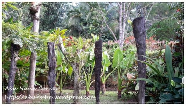 Taman Pertanian Sabah @ Tenom (21)