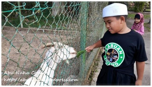 Taman Pertanian Sabah @ Tenom (25)