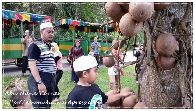 Taman Pertanian Sabah @ Tenom (5)