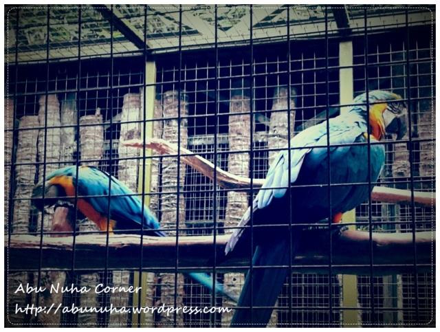 Zoo Lokkawi (8)